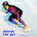 Surfin' the net